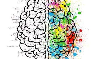 Χαρτογράφηση της αυτοεκτίμησης στον ανθρώπινο εγκέφαλο